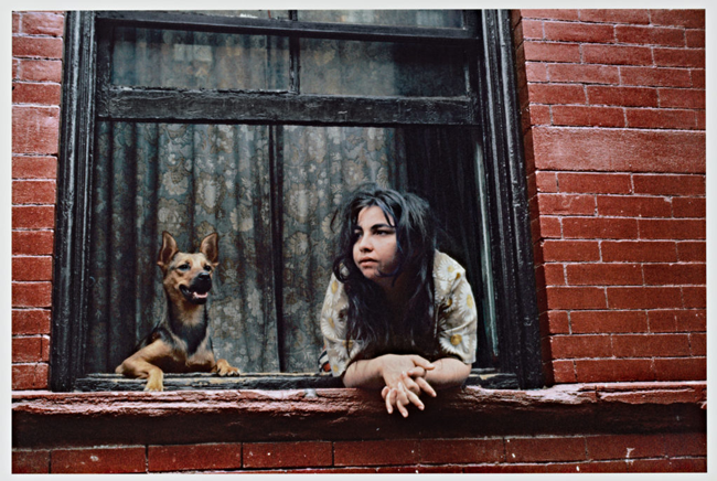 Helen Levitt (U.S.A., 1913–2009), New York, 1972. Dye transfer print. © Helen Levitt Film Documents LLC. All rights reserved. The Capital Group Foundation Photography Collection at Stanford University, 2019.45.54